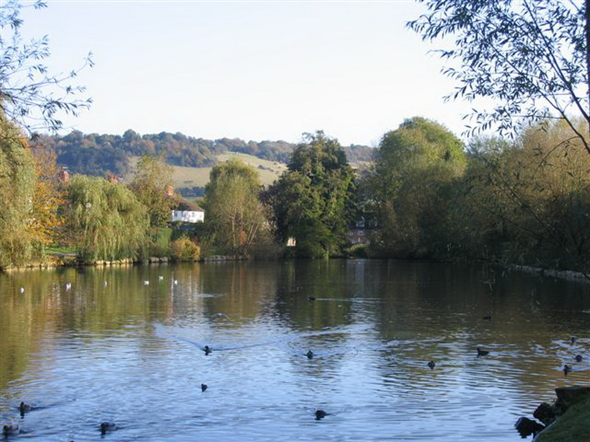 View of the Pond in Meadowbank, Dorking and Box Hill in the distance